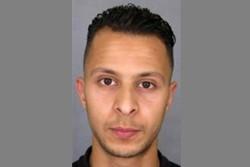 پیرس حملوں کا زندہ بچ جانے والا دہشت گرد فرانس کے حوالے