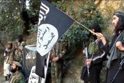 گروه تروریستی داعش افغانستان