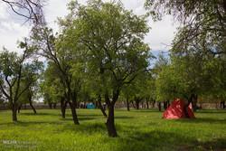 فعالیت ۱۲ اکیپ یگان حفاظت منابع طبیعی زنجان برای روزطبیعت