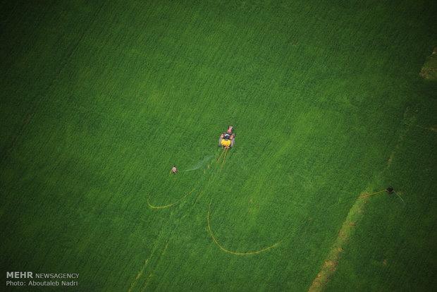 نمای هوایی از طبیعت گرگان