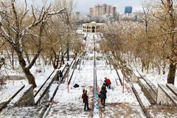 بارش برف و باران در آذربایجان شرقی