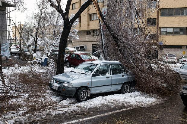 Spring snow in Tabriz