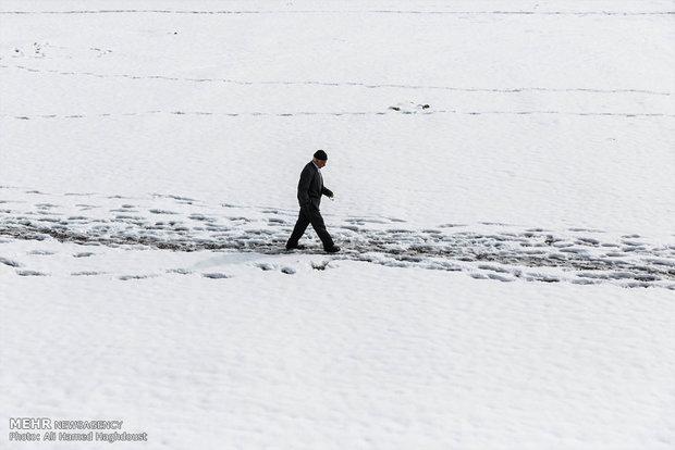 بارش برف بهاری در تبریز