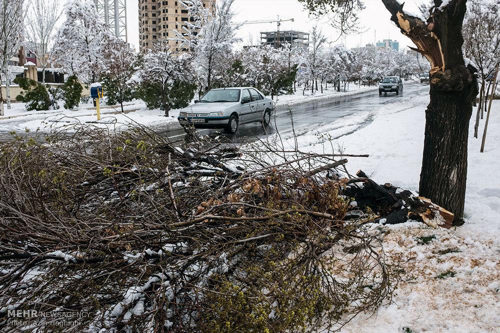 شهری که با نبود ارهبرقی قفل شد/چالش انفرادی ۳۱ مدیر بحران با برف