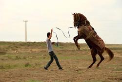 'Atlan' crowned best documentary award in Rural Route