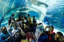 Ortadoğu'nun en büyük akvaryumu İran'da açıldı