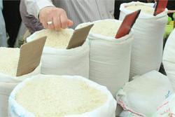 پیشبینی فروش ۸۰۰ تن برنج سفید مرغوب توسط کشاورزان خرمآبادی