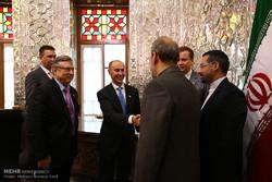 فن لینڈ کی پارلیمنٹ کی خارجہ پالیسی کے سربراہ کی لاریجانی سے ملاقات