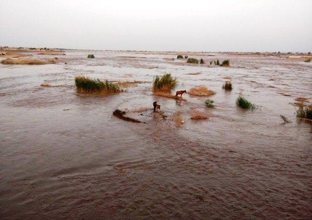 سیل خوزستان طغیان رودخانه دز