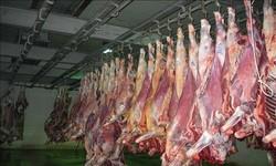 تولید ۸ هزار تن گوشت قرمز و ۳۷ هزار تن شیر در استان بوشهر