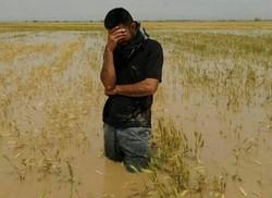 حتی یک ریال از خسارت سیل سال ۹۵  خوزستان پرداخت نشده است