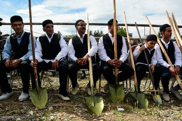آئین سنتی بیل گردانی