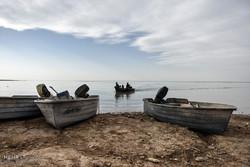 بیش از ۴۰ درصد تالاب بینالمللی هامون آبگیری شد