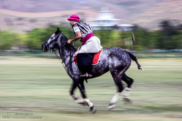 Polo played for nomination on UNESCO list