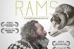 Icelandic film 'Rams' a hit with Iranian audience