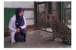 سفارش دین اسلام مهربانی با همه جانداران است/ یک دست صدا ندارد