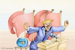 برترین کاریکاتورهای ۱۰ اردیبهشت ۹۵