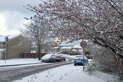 İngiltere'de Bahar Karı!