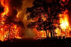 افزایش آتش سوزی جنگل ها در خوزستان/ ۲۹۶ هکتار پارسال در آتش سوخت