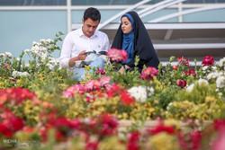 تہران میں کتاب کی 29 ویں بین الاقوامی نمائشگاہ کا تیسرا دن