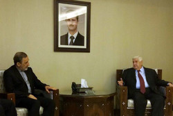 'Syria would not be allowed to be new Libya'