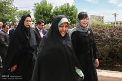 کاشت درخت صلح بین مردم ایران و ژاپن