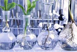 ایجاد مرکز فناوری محصولات تراریخته/ واگذاری دستاوردهای تحقیقاتی به بخش خصوصی
