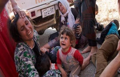 ئازادی ۳۵۴ ژنی ئێزدی له فهلوجه/کوژرانی ۷ داعشی له موسڵ