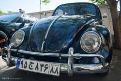 Elburz'da klasik otomobiller rallisi