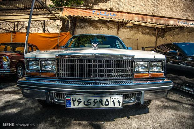 Klasik Otomobiller Rallisi