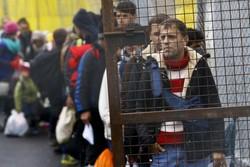 بحران پناهجویان در اتریش