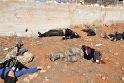 مقتل 15 انتحاريا حاولوا التسلل لمنطقتين غربي محافظة الانبار
