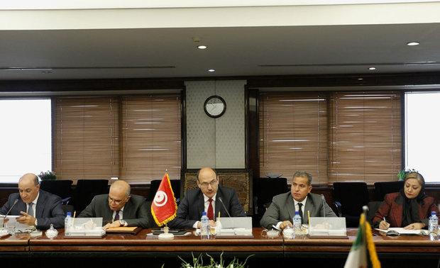 Iranian and Tunisian energy ministers meet