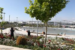 بازدید رئیس مجلس شورای اشسلامی از شهر آفتاب