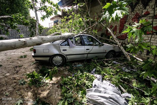 پاکستان کے مختلف علاقوں میں آندھی اور طوفانی بارش سے 13 افراد ہلاک