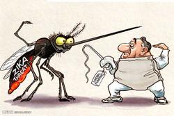 برترین کاریکاتورهای ۱ خرداد ۹۵