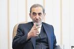 Velayati says Iran won't allow Syria's disintegration