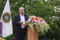 سازمان فرهنگی هنری شهرداری تهران جشنواره تابستانه برگزار میکند
