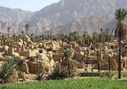 ساخت نیروگاه خورشیدی در روستاها/ فضای معیشت روستایی کاهش یافت