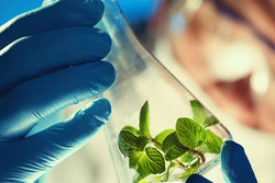 Iran ranks 14th in biotech