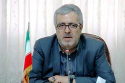 بانک اطلاعاتی بانوان فعال فرهنگی و هنری استان مرکزی تشکیل میشود