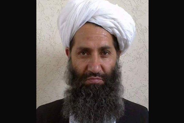سرکرده طالبان: با آمریکا مذاکره می کنیم اما آتش بس نه