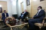 شهردار وین وارد تهران شد