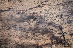 ۱۸۰ هکتار از طبیعت ارتفاعات «هنگام» در آتش سوزی از بین رفت
