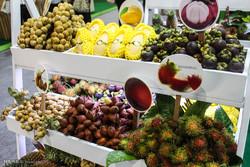 نمایشگاه مواد غذایی بانکوک تایلند