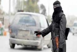 داعش ۸۰ کهسی له یهک مانگدا له سێداره داوه