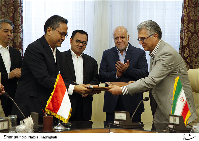 Indonesia to buy 80,000 tons of LPG from Iran
