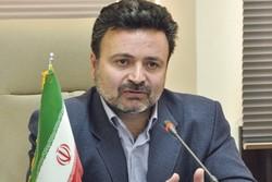 رضا بهمن پور