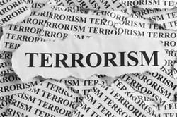 بزرگترین چالش قاره آفریقا مبارزه با تروریسم و افراط گرایی است