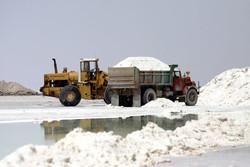 سالانه ۲ میلیون تن نمک در استان سمنان استخراج میشود